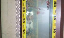 Rectangular Clear Glass Fish Tank with 2 fishes and