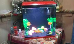 New fish tank...with..all..accesary