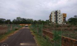 Residential land sale Near AIMS HOSPITAL Dimensions