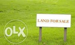 Dear friends i want sale in my mordern village plot 120