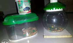 Two Green Top Clear Glass Pet Tanks