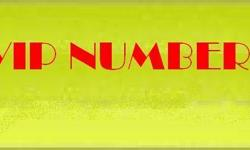 Fancy Vodafone prepaid number(Collection 3).. More
