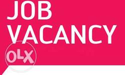 Wanted fresh person job immediately vacancy available