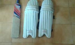 Cricket bat, pads and helmet in very good condition.